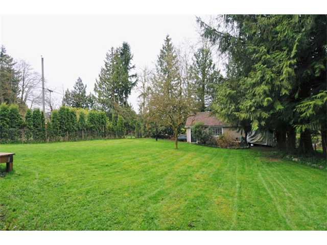 Photo 5: Photos: 11731 246TH Street in Maple Ridge: Cottonwood MR House for sale : MLS®# V1012742