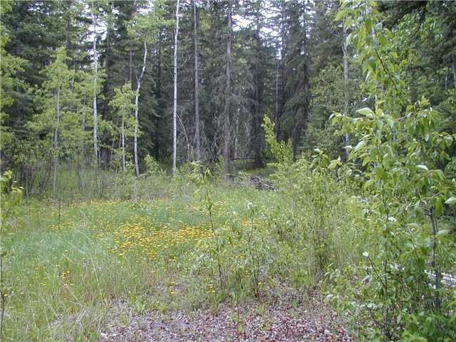 Main Photo: LOT 16 LARSON Road in Bridge Lake: Bridge Lake/Sheridan Lake Land for sale (100 Mile House (Zone 10))  : MLS®# N225314