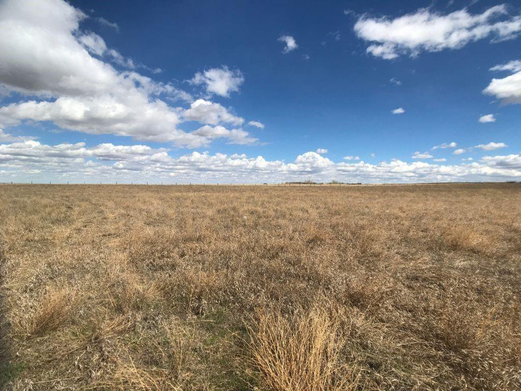 Main Photo: 12-185006 RR220: Rural Vulcan County Land for sale : MLS®# C4289962