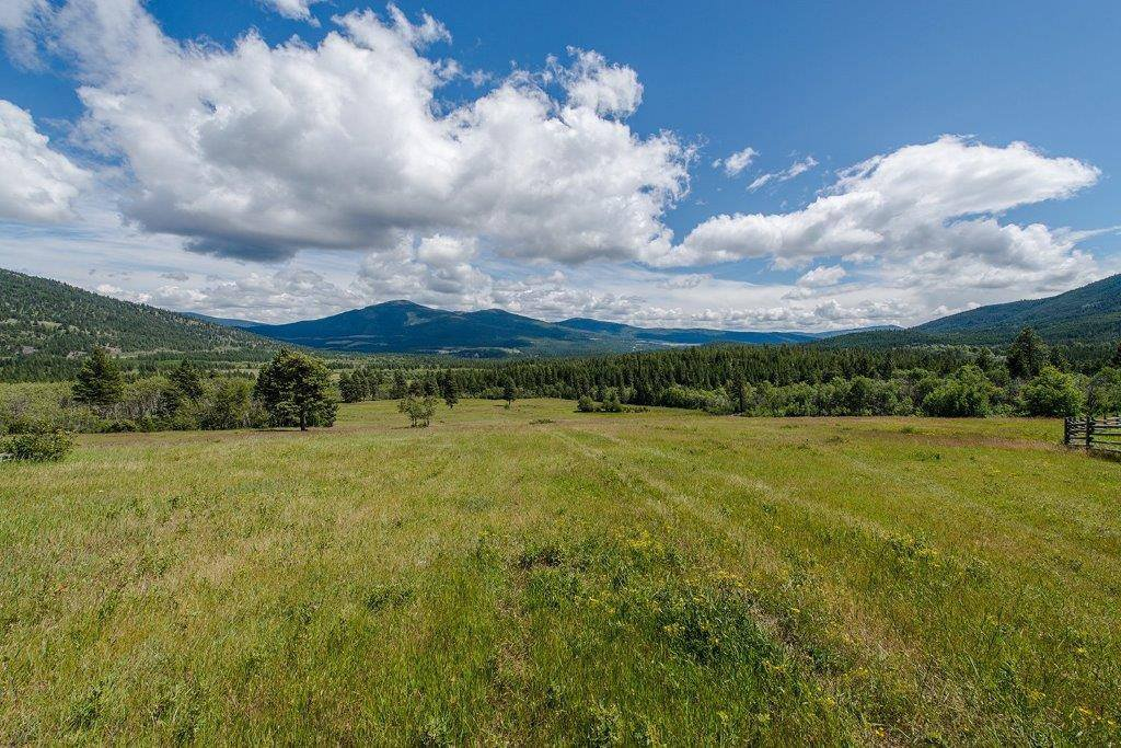 Main Photo: Strata Lot 1 Boston Bar Trail in Merritt: Land for sale