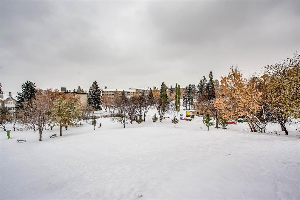 Photo 19: Photos: 202 2220 16a Street SW in Calgary: Bankview Apartment for sale : MLS®# A1043749