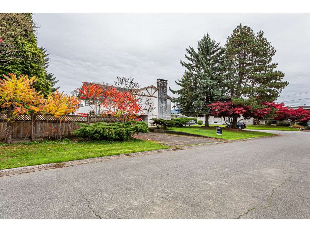 Main Photo: 46065 CAMROSE Avenue in Chilliwack: Fairfield Island House for sale : MLS®# R2415701
