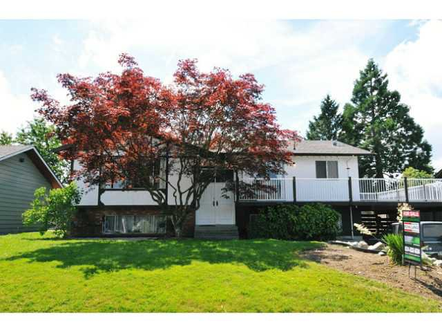 Main Photo: 22774 REID AV in Maple Ridge: East Central House for sale : MLS®# V1015105