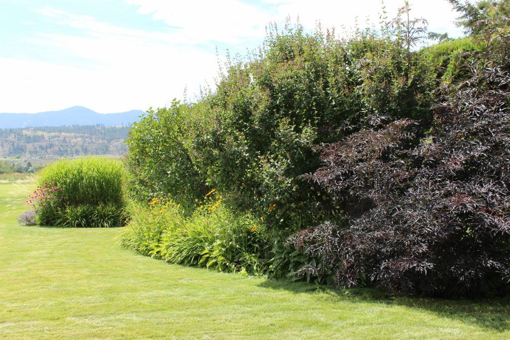 Photo 37: Photos: 401 Nueva Wynd in Kamloops: South Thompson Valley House for sale : MLS®# 136166