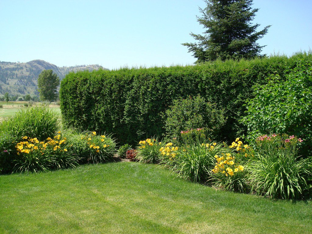 Photo 33: Photos: 401 Nueva Wynd in Kamloops: South Thompson Valley House for sale : MLS®# 136166