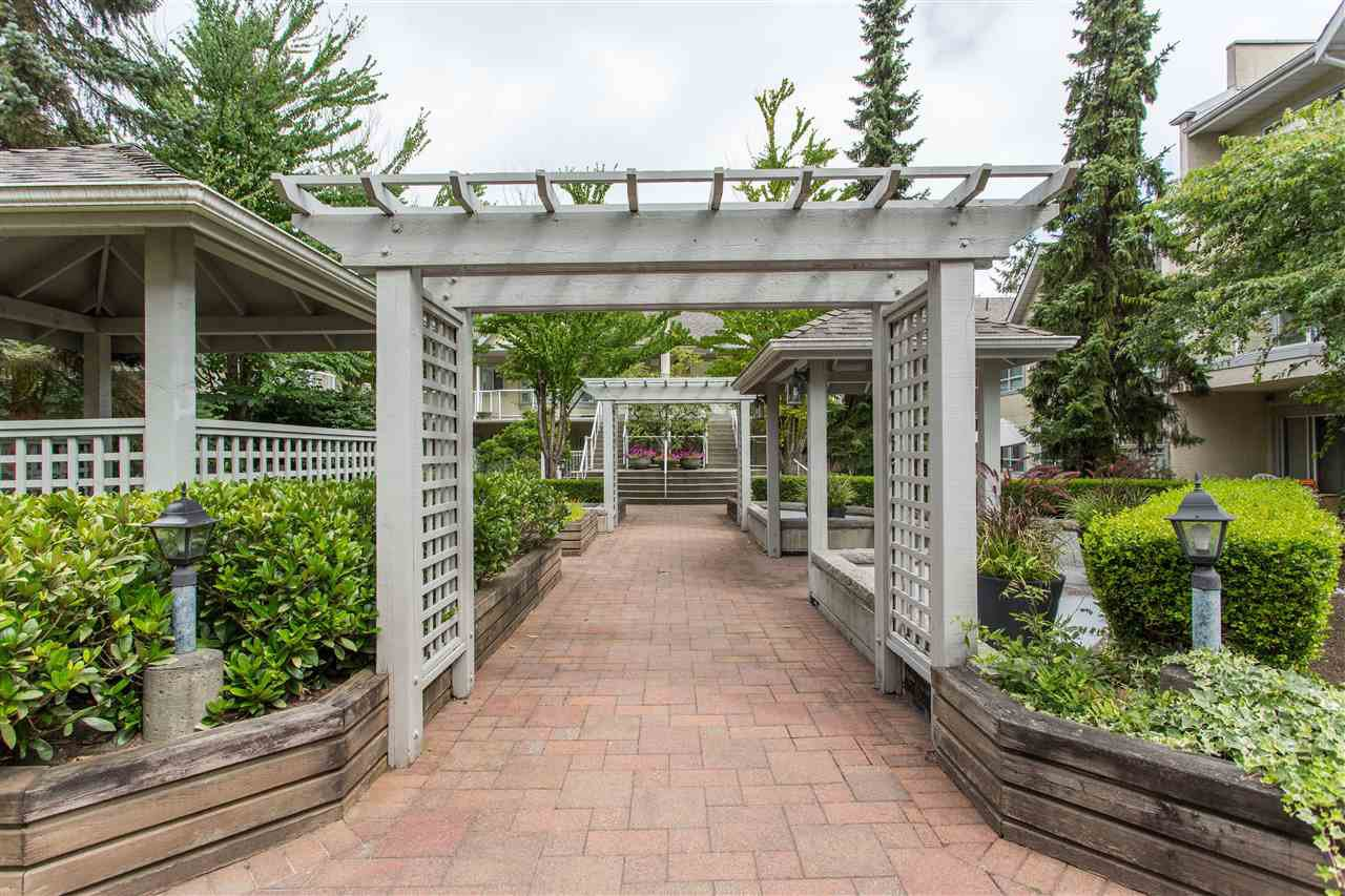 """Main Photo: 225 4155 SARDIS Street in Burnaby: Central Park BS Townhouse for sale in """"SARDIS COURT"""" (Burnaby South)  : MLS®# R2479839"""