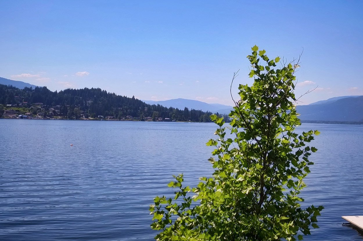 Photo 30: Photos: 2022 Eagle Bay Road: Blind Bay House for sale (South Shuswap)  : MLS®# 10202297