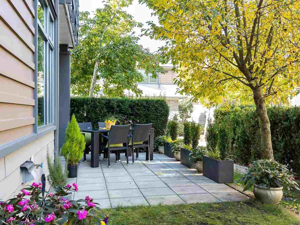 "Main Photo: 49 2603 162 Street in Surrey: Grandview Surrey Townhouse for sale in ""VINTERRA"" (South Surrey White Rock)  : MLS®# R2457726"