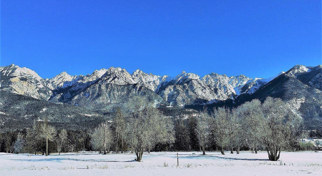 Main Photo: Lot 118 RIVERSIDE DRIVE in Fairmont Hot Springs: Vacant Land for sale : MLS®# 2453338