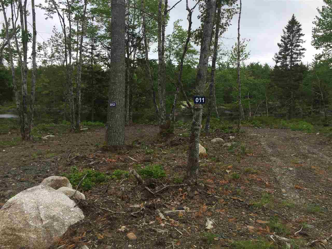 Photo 6: Photos: 6720 Hwy 325 in West Clifford: 405-Lunenburg County Commercial for sale (South Shore)  : MLS®# 202011822