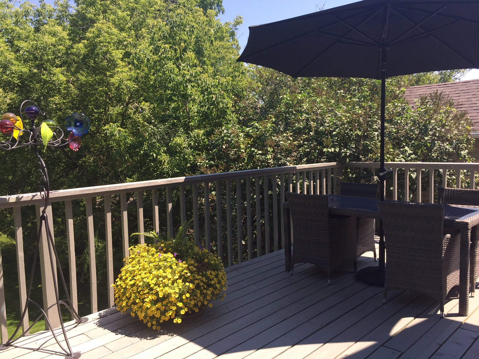 Photo 56: Photos: 430 North Street: Beaverton Freehold for sale (Brock)  : MLS®# N4030755