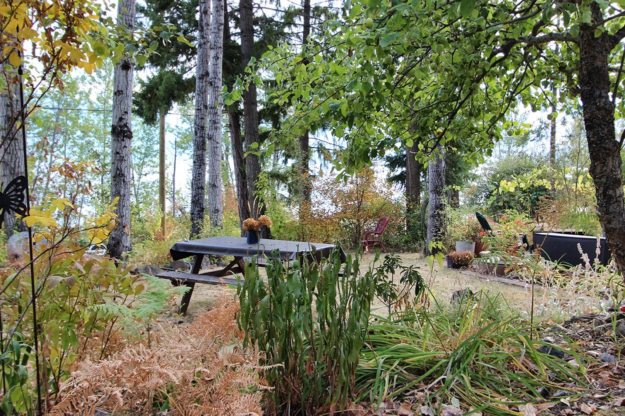 Photo 28: Photos: 6469 Squilax Anglemont Highway: Magna Bay Land Only for sale (North Shuswap)  : MLS®# 10202292