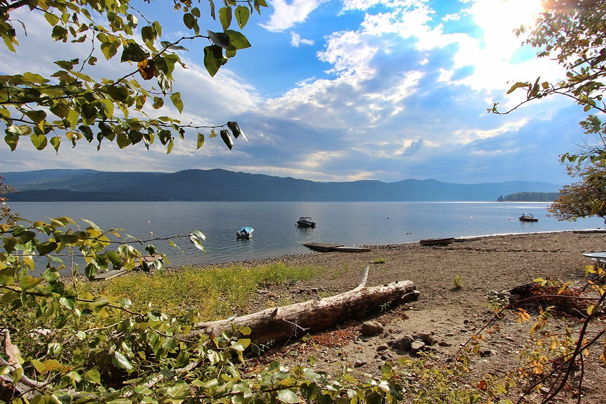 Photo 4: Photos: 6469 Squilax Anglemont Highway: Magna Bay Land Only for sale (North Shuswap)  : MLS®# 10202292