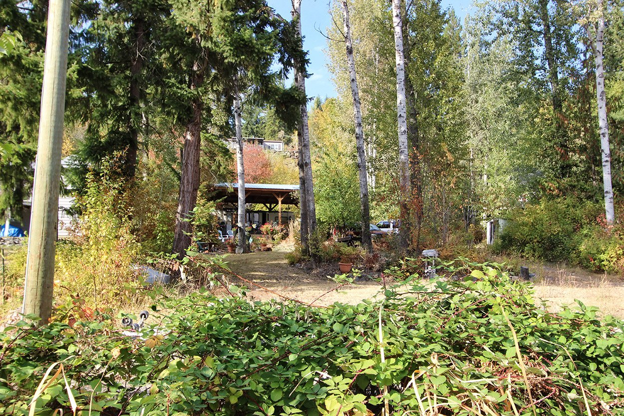 Photo 41: Photos: 6469 Squilax Anglemont Highway: Magna Bay Land Only for sale (North Shuswap)  : MLS®# 10202292