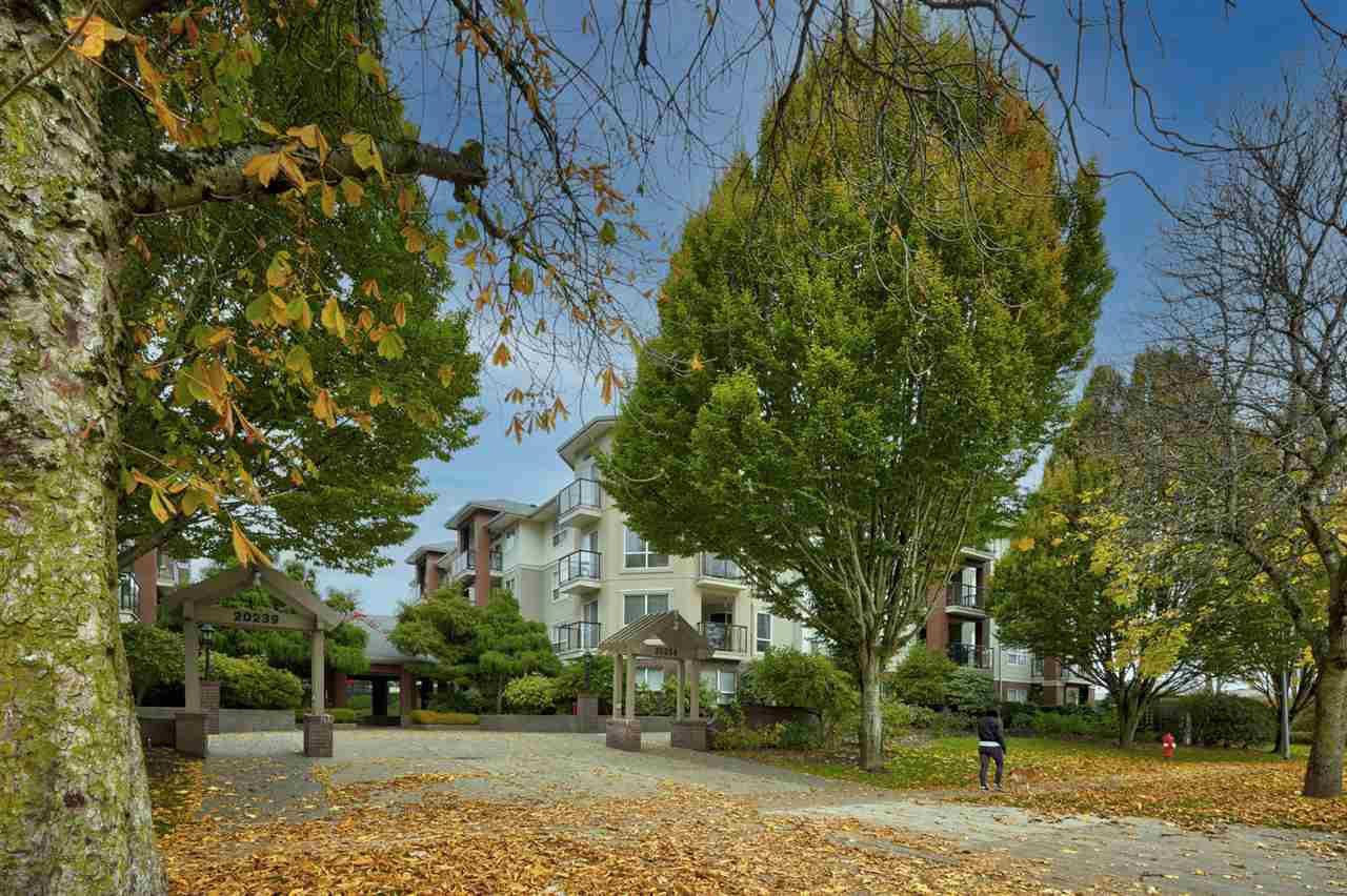"Main Photo: 217 20259 MICHAUD Crescent in Langley: Langley City Condo for sale in ""City Grande"" : MLS®# R2515999"
