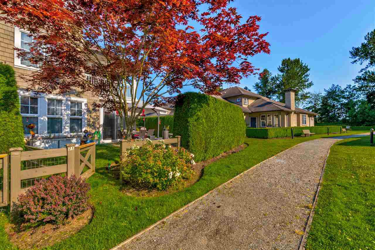 """Photo 26: Photos: 31 19452 FRASER Way in Pitt Meadows: South Meadows Townhouse for sale in """"Shoreline"""" : MLS®# R2476702"""
