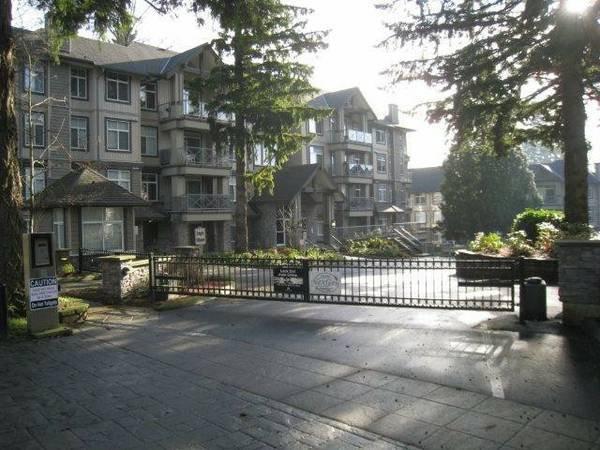 Main Photo: #308 33338 Bourquin Cr. in Abbotsford: Central Abbotsford Condo for rent