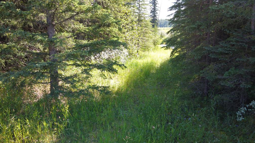 Photo 7: Photos: 5-31539 Rge Rd 53c: Rural Mountain View County Land for sale : MLS®# A1024431