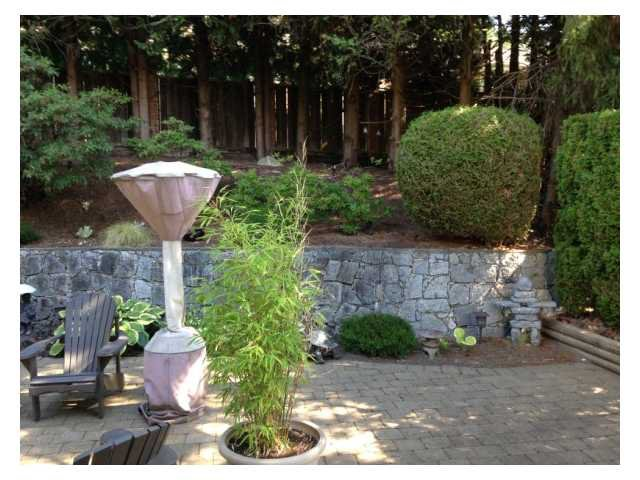 Photo 4: Photos: 350 HICKEY DR in Coquitlam: Coquitlam East House for sale : MLS®# V1082025