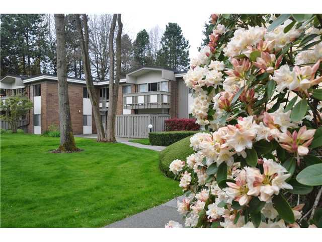 "Main Photo: 6 5565 OAK Street in Vancouver: Shaughnessy Condo for sale in ""SHAWNOAKS"" (Vancouver West)  : MLS®# V946149"