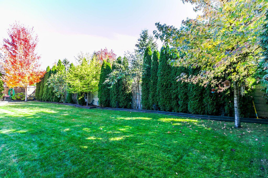 Photo 42: Photos: 4936 207b Street in Langley: Langley City House for sale : MLS®# R2117178