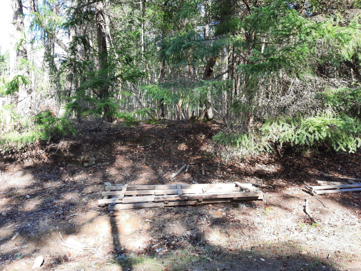 Main Photo: lot 170 Halibut Hill Rd in : Isl Mudge Island Land for sale (Islands)  : MLS®# 857458