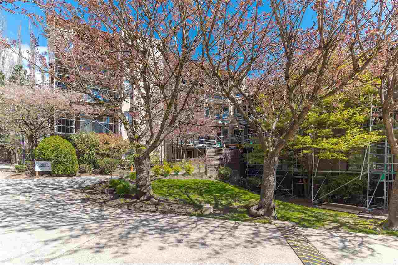 Main Photo: 309 9867 MANCHESTER DRIVE in Burnaby: Cariboo Condo for sale (Burnaby North)  : MLS®# R2260365