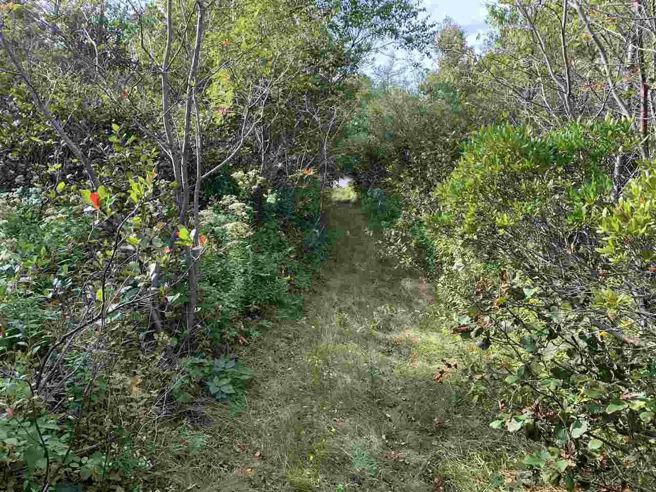 Main Photo: Acreage Warburton Road in Gardiner Mines: 203-Glace Bay Vacant Land for sale (Cape Breton)  : MLS®# 202018915