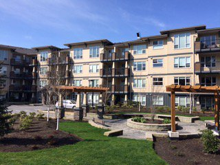 Main Photo: #309 2565 Campbell Ave. in Abbotsford: Condo for rent