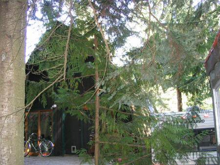 Photo 6: Photos: Whistler's Most Affordable Home