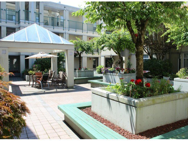 """Photo 13: Photos: 314 20680 56TH Avenue in Langley: Langley City Condo for sale in """"CASSOLA COURT"""" : MLS®# F1417789"""