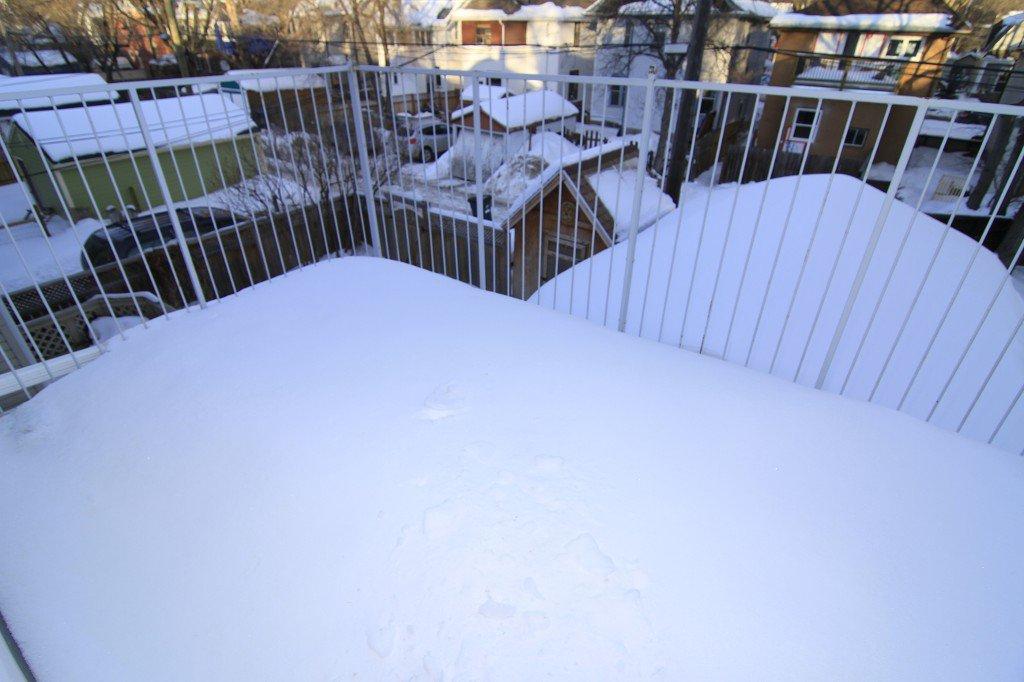 Photo 23: Photos: 279 Aubrey Street in Winnipeg: Wolseley Duplex for sale (West Winnipeg)  : MLS®# 1303214
