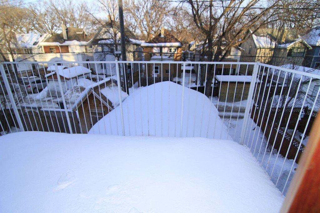 Photo 24: Photos: 279 Aubrey Street in Winnipeg: Wolseley Duplex for sale (West Winnipeg)  : MLS®# 1303214