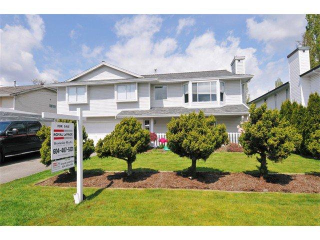 Main Photo: 20137 WANSTEAD Street in Maple Ridge: Southwest Maple Ridge House for sale : MLS®# V1005318