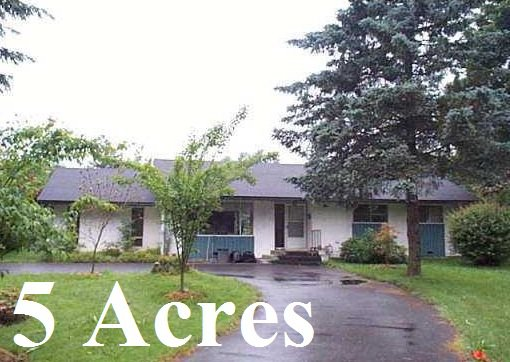Main Photo: 8969 187 in Surrey: Land for sale