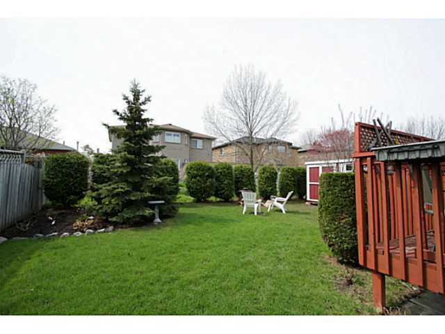 Photo 20: Photos: 54 DOUGLAS DR in BARRIE: House for sale : MLS®# 1403531
