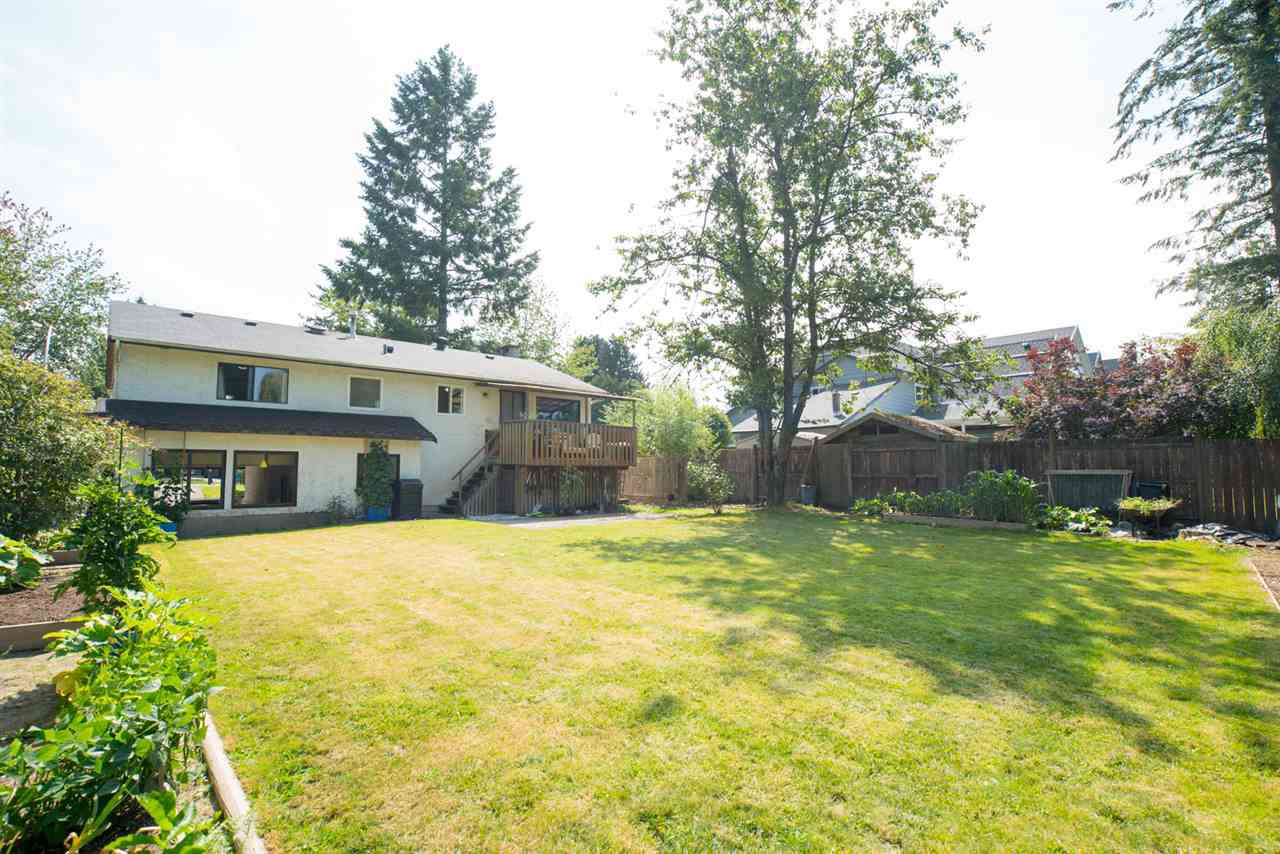 Main Photo: 6115 Palomino Crescent in Surrey: House for sale (Cloverdale)