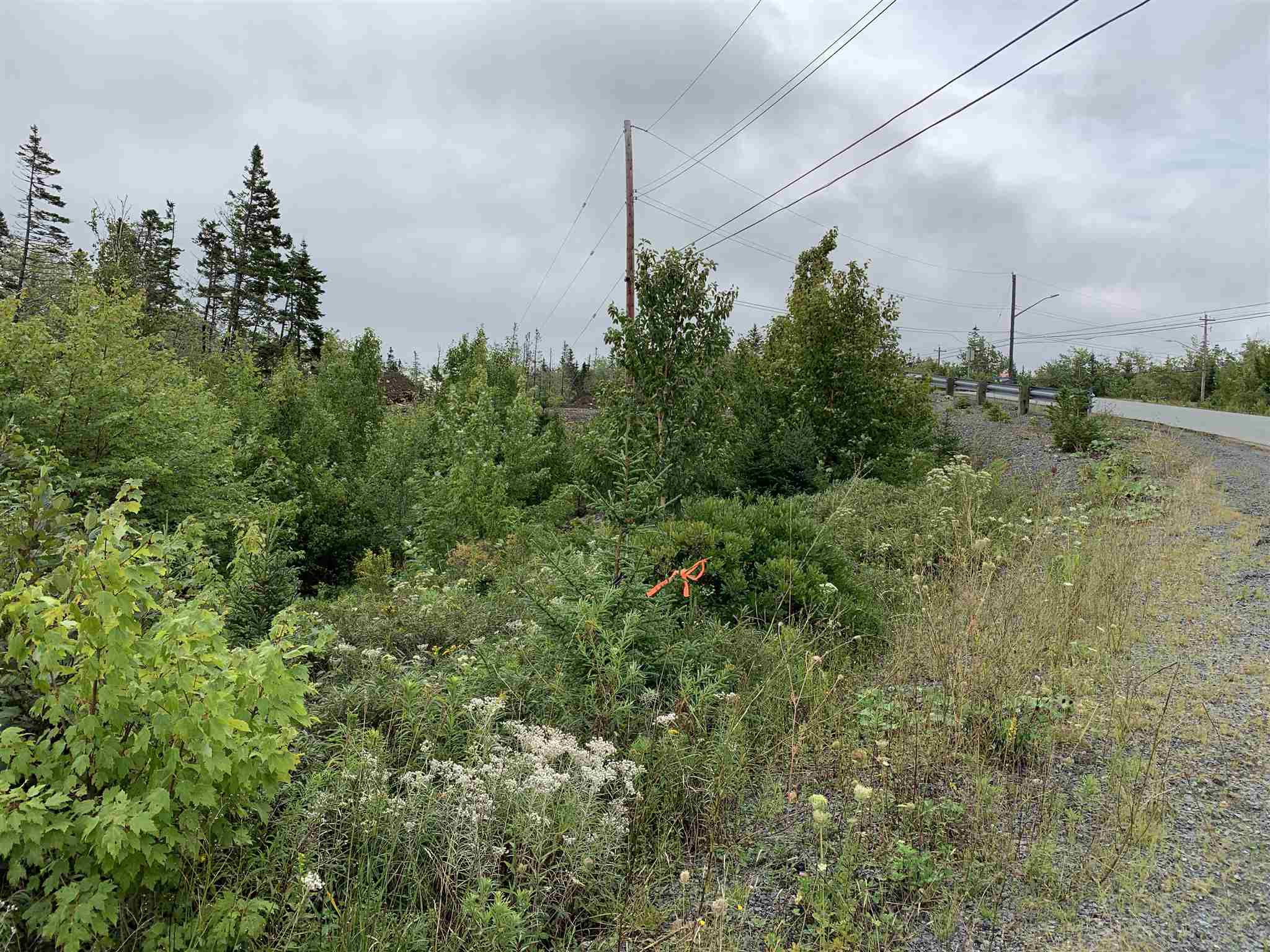 Main Photo: Lot 40A 15 Kittiwake Ridge in Halibut Bay: 9-Harrietsfield, Sambr And Halibut Bay Vacant Land for sale (Halifax-Dartmouth)  : MLS®# 202100544