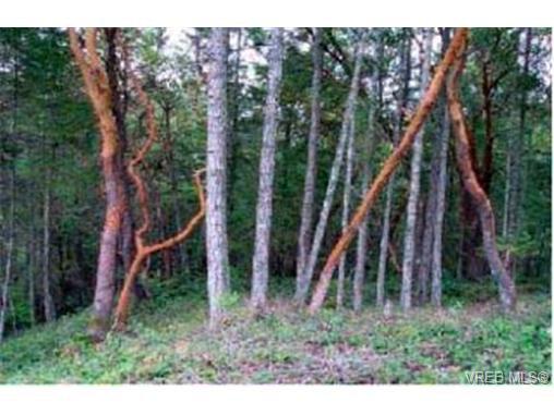 Photo 3: Photos: LOT 2 Creekside Dr in : GI Salt Spring Land for sale (Gulf Islands)  : MLS®# 285778