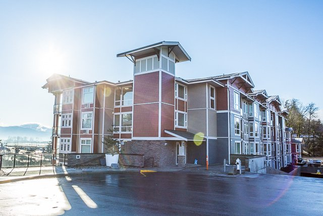 Main Photo: 116-2242 Whatcom Rd in Abbotsford: Abbotsford East Condo for rent