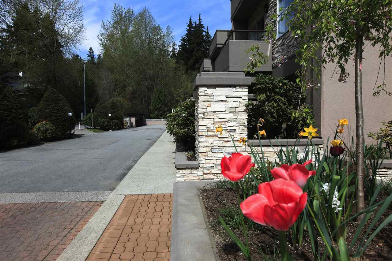 Main Photo: 615 1500 OSTLER COURT in North Vancouver: Indian River Townhouse for sale : MLS®# R2143458
