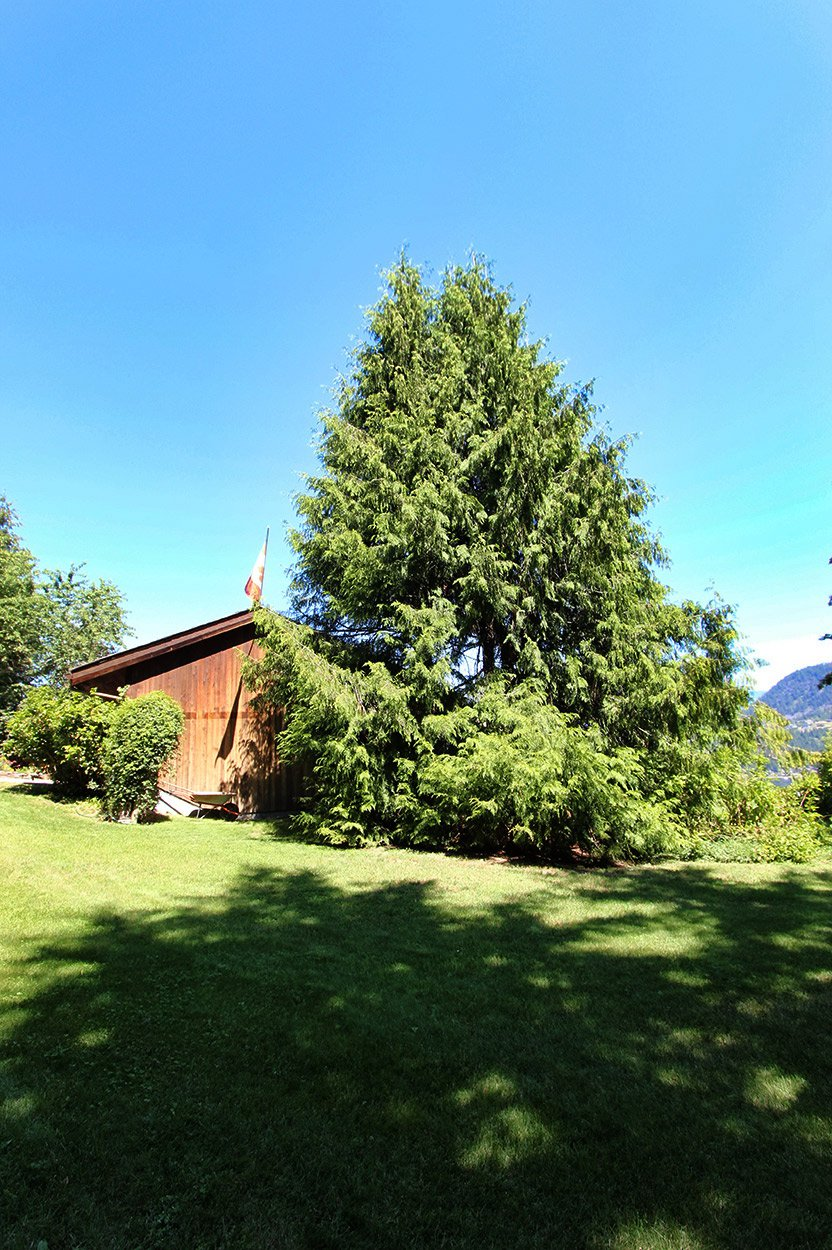 Photo 57: Photos: 2383 Mt. Tuam Crescent in : Blind Bay House for sale (South Shuswap)  : MLS®# 10164587