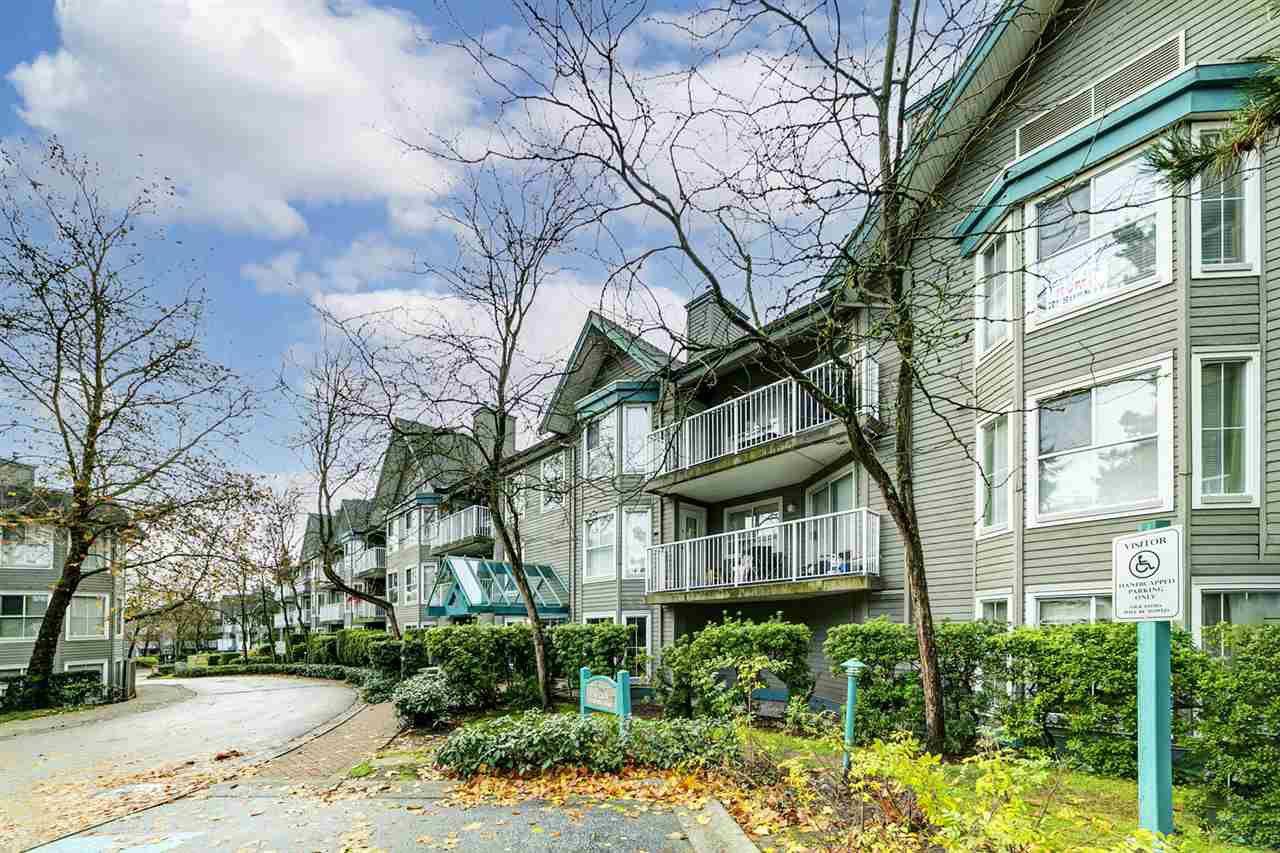 """Main Photo: 209 15130 108 Avenue in Surrey: Guildford Condo for sale in """"RIVER POINTE"""" (North Surrey)  : MLS®# R2519228"""