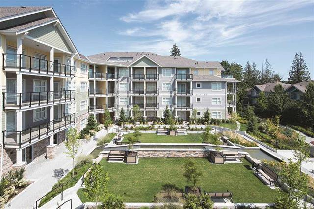 Main Photo: 307 5020 221A Street in Langley: Murrayville Condo for sale