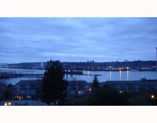 Main Photo: #313 60 Richmond St in New Westminster: Fraserview NW Condo for sale : MLS®# V801270