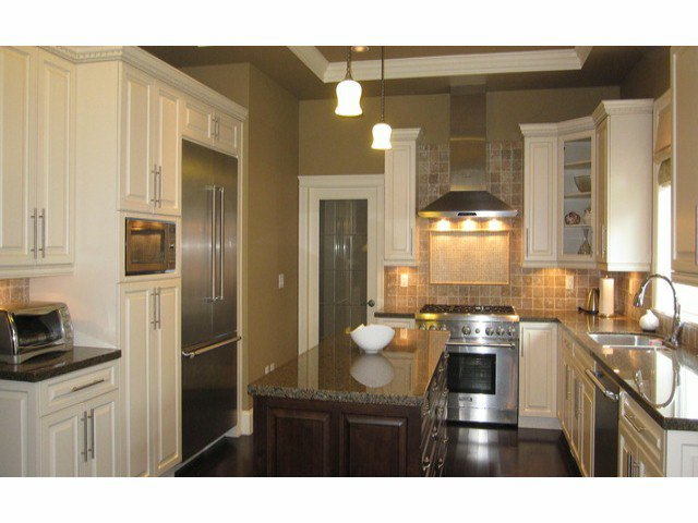 Photo 3: Photos: 2556 163A ST in Surrey: Grandview Surrey House for sale (South Surrey White Rock)  : MLS®# F1414845