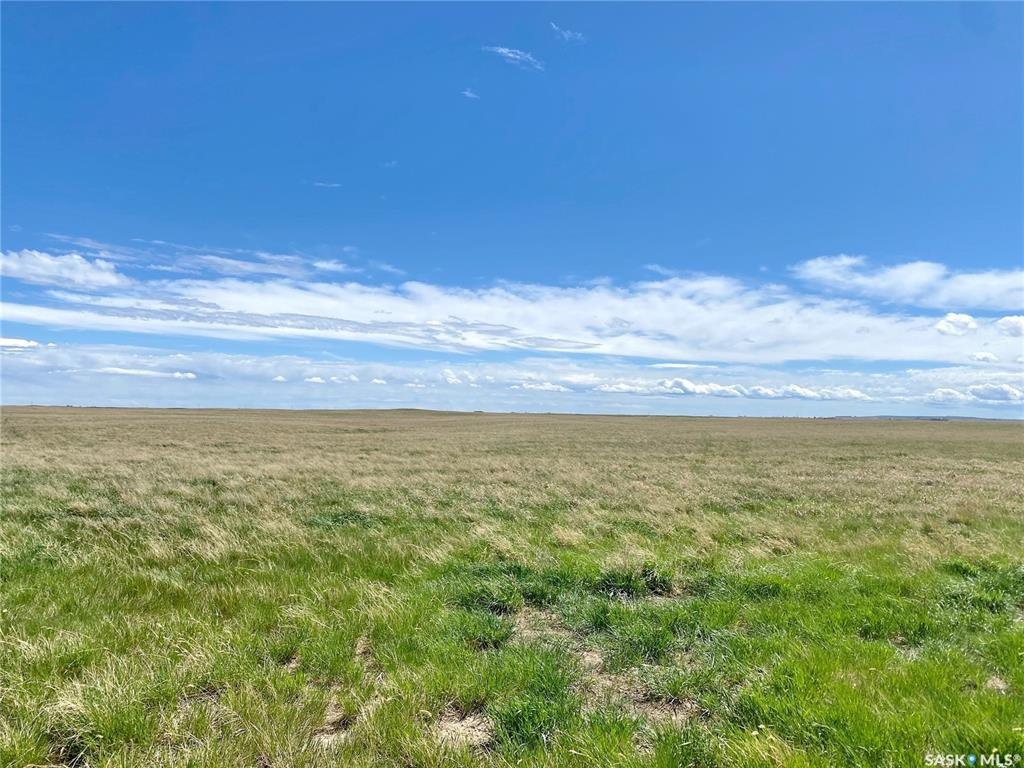 Main Photo: Malinowski Farmland in Maple Bush: Farm for sale (Maple Bush Rm No. 224)  : MLS®# SK826020
