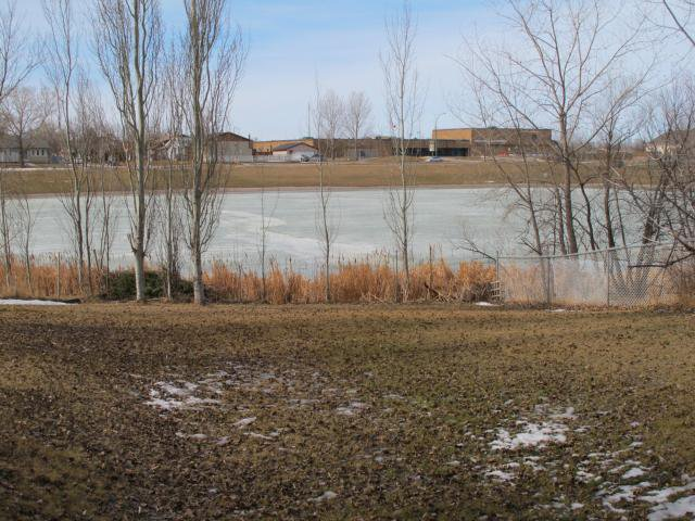 Photo 6: Photos:  in WINNIPEG: Maples / Tyndall Park Residential for sale (North West Winnipeg)  : MLS®# 1203832