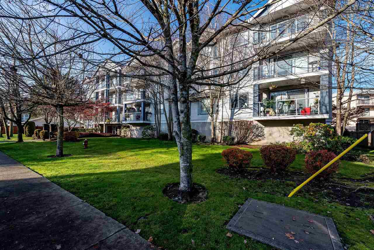 """Main Photo: 312 20177 54A Avenue in Langley: Langley City Condo for sale in """"STONEGATE"""" : MLS®# R2419590"""