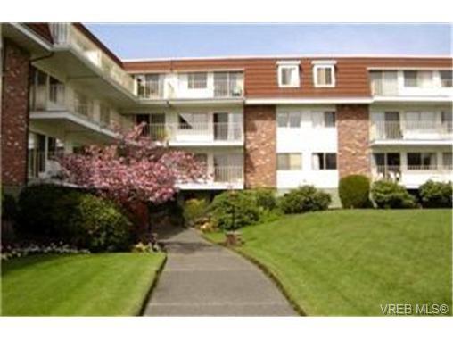 Main Photo: 117 1680 Poplar Avenue in VICTORIA: SE Mt Tolmie Condo Apartment for sale (Saanich East)  : MLS®# 246804